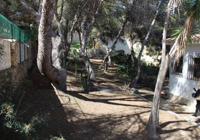 1166: Land in Alacant/Alicante