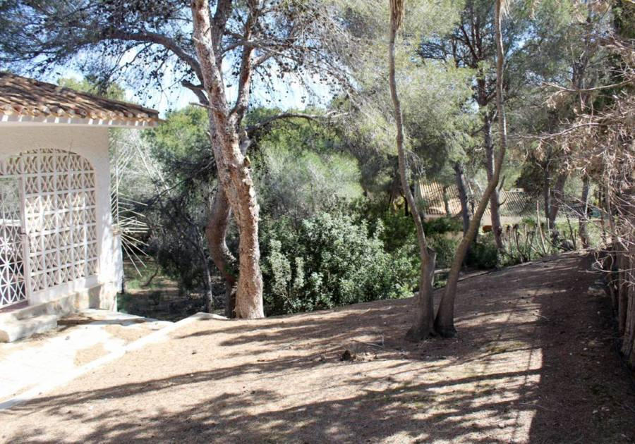 1166: Land for sale in Alacant/Alicante