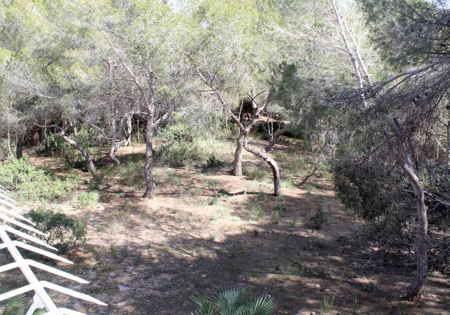 1167: Land for sale in Alacant/Alicante